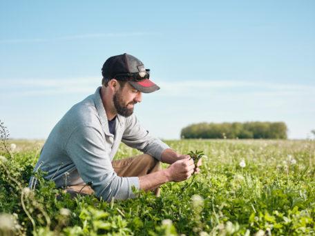 Image of farmer in a field
