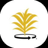client-icon_name